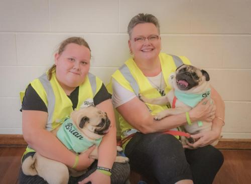 Bhyde 201206 Hug a pug Auckland-128