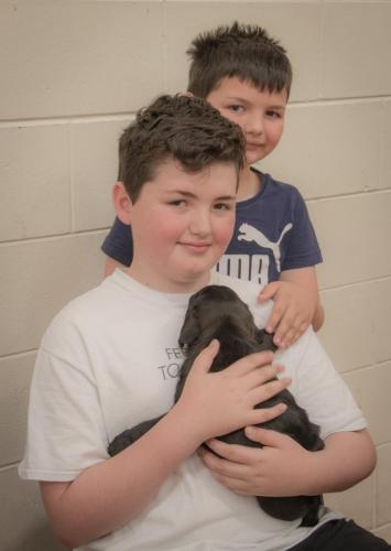 Bhyde 201206 Hug a pug Auckland-13