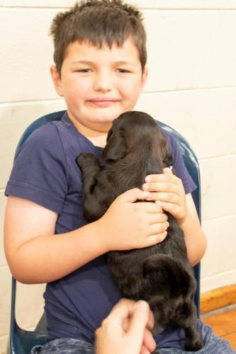 Bhyde 201206 Hug a pug Auckland-14