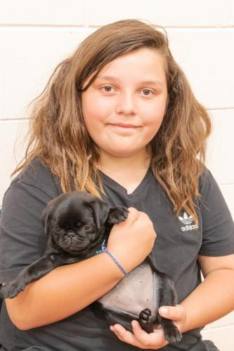 Bhyde 201206 Hug a pug Auckland-15