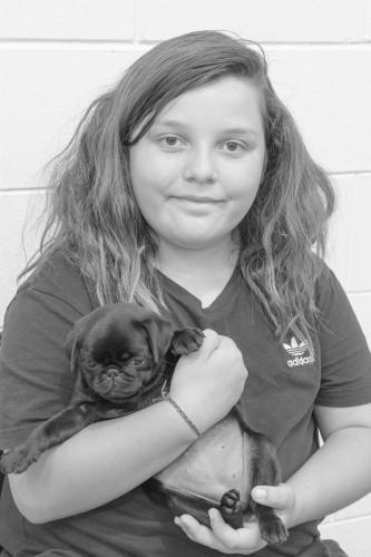 Bhyde 201206 Hug a pug Auckland-16