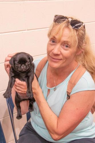 Bhyde 201206 Hug a pug Auckland-19
