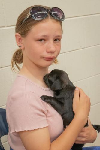 Bhyde 201206 Hug a pug Auckland-21