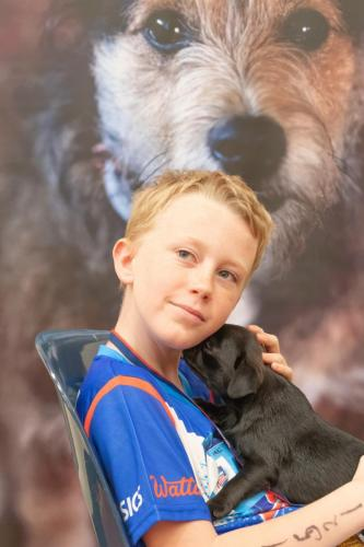 Bhyde 201206 Hug a pug Auckland-30