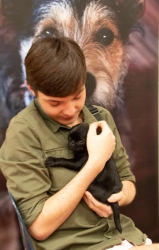 Bhyde 201206 Hug a pug Auckland-39