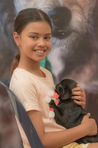 Bhyde 201206 Hug a pug Auckland-41