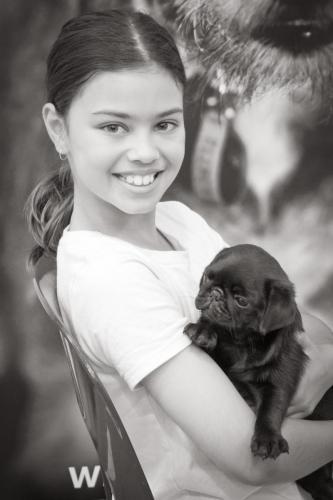 Bhyde 201206 Hug a pug Auckland-43