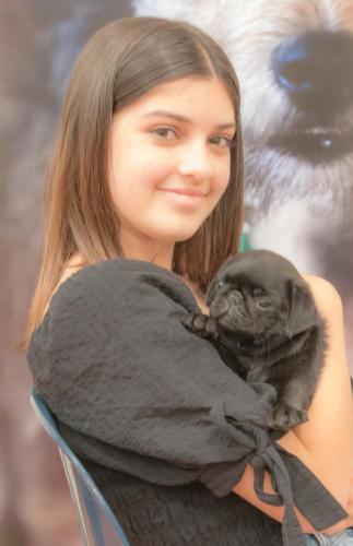 Bhyde 201206 Hug a pug Auckland-46