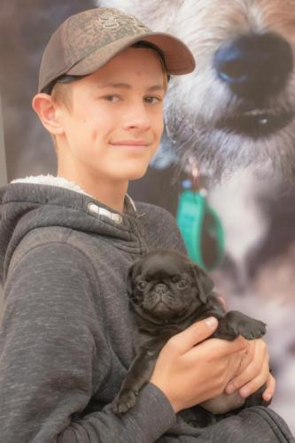 Bhyde 201206 Hug a pug Auckland-48