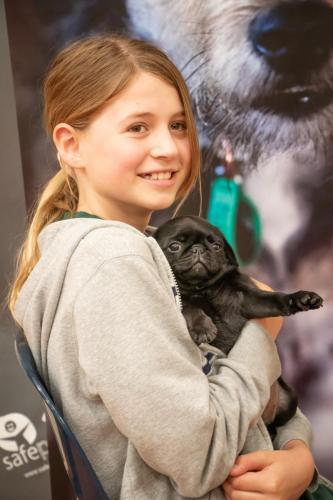 Bhyde 201206 Hug a pug Auckland-49