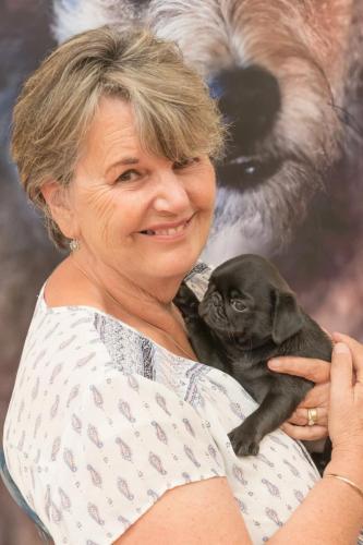 Bhyde 201206 Hug a pug Auckland-52