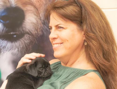 Bhyde 201206 Hug a pug Auckland-54
