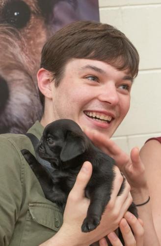 Bhyde 201206 Hug a pug Auckland-58