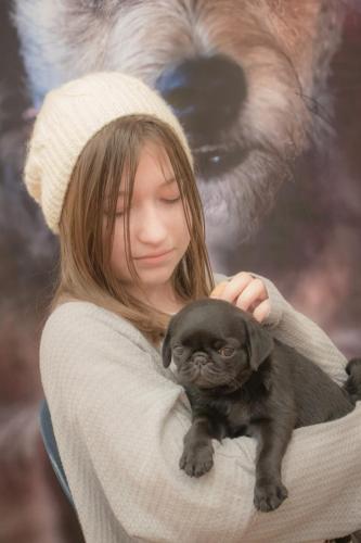 Bhyde 201206 Hug a pug Auckland-59