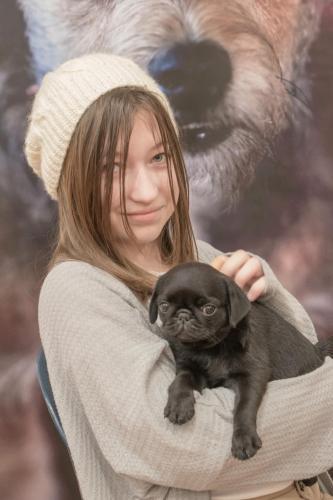 Bhyde 201206 Hug a pug Auckland-60