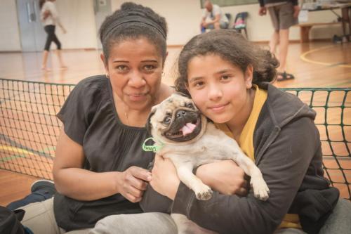 Bhyde 201206 Hug a pug Auckland-63