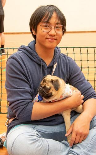 Bhyde 201206 Hug a pug Auckland-72