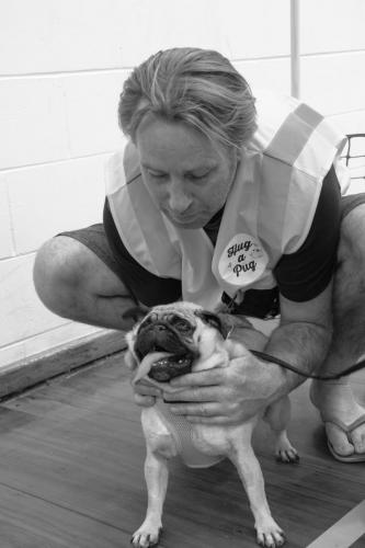 Bhyde 201206 Hug a pug Auckland-74