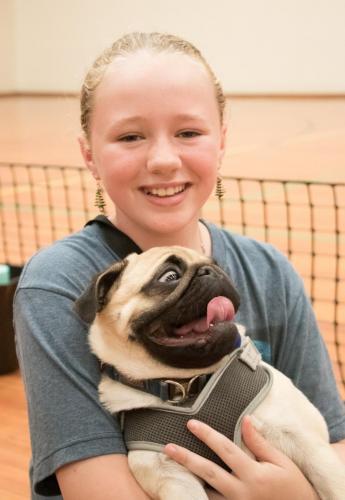 Bhyde 201206 Hug a pug Auckland-94